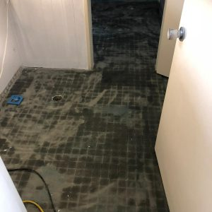 coated with ultrabond instead of grinding the tiles for cleanliness